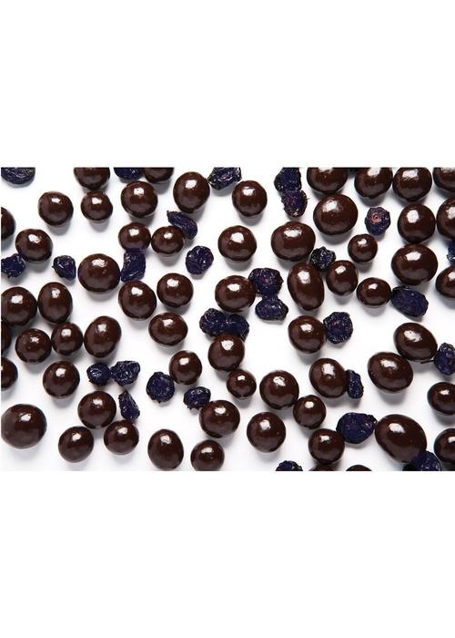 f9232-high-cocoa-dark-chocolate-blueberries